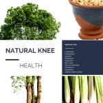 knee health