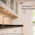 DIY-Kitchen-Cleaner