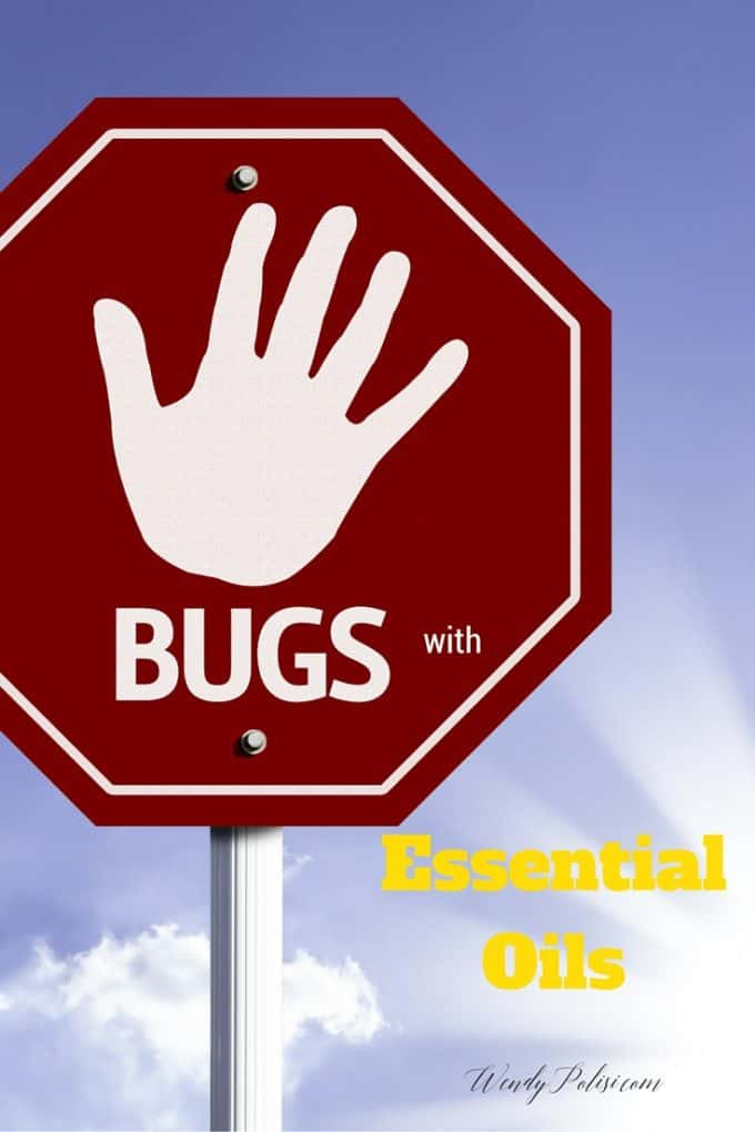 Stop Bugs with Essential Oils