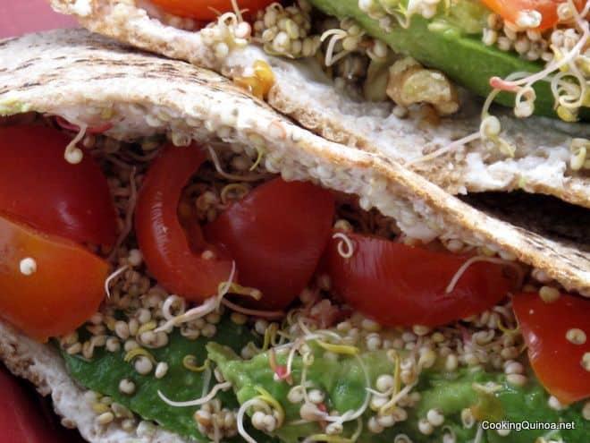 Veggie Sandwich with Quinoa Sprouts