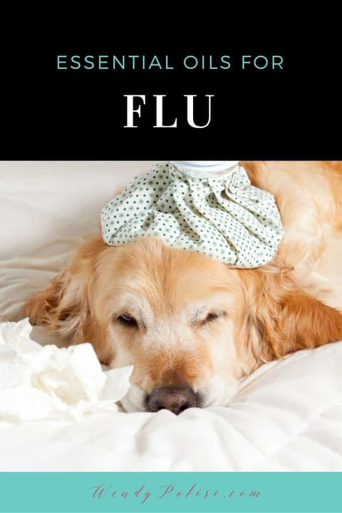 Essential Oils for Flu P