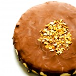 frozen-chocolate-peanut-butter-cake