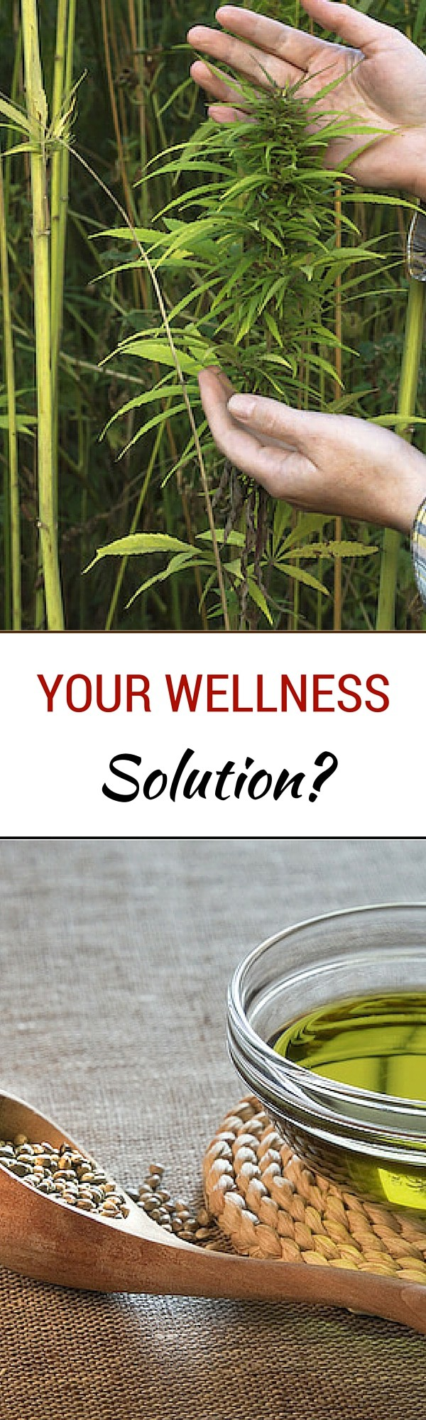 Your Wellness Solution LP