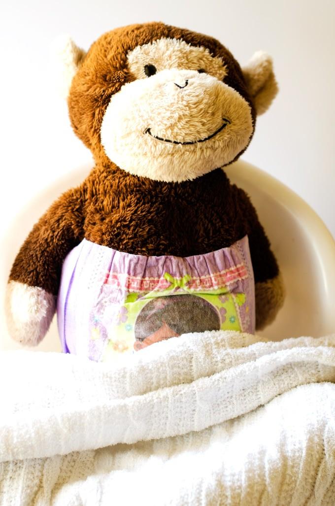 monkey-potty-blanket