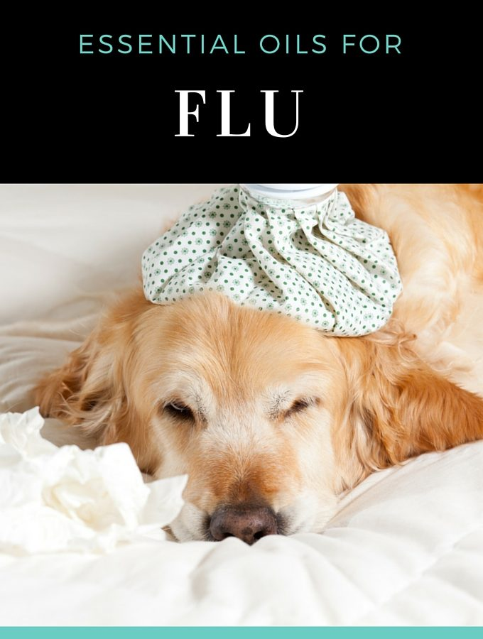 Essential Oils for Flu