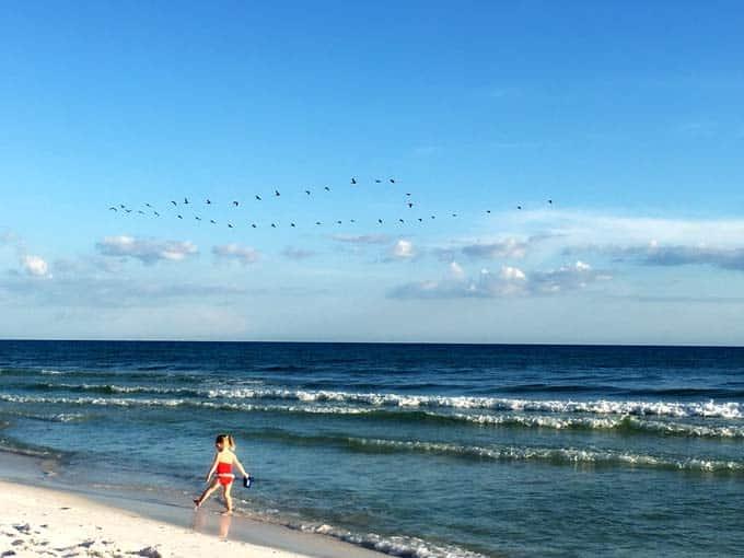 skye-beach-2016