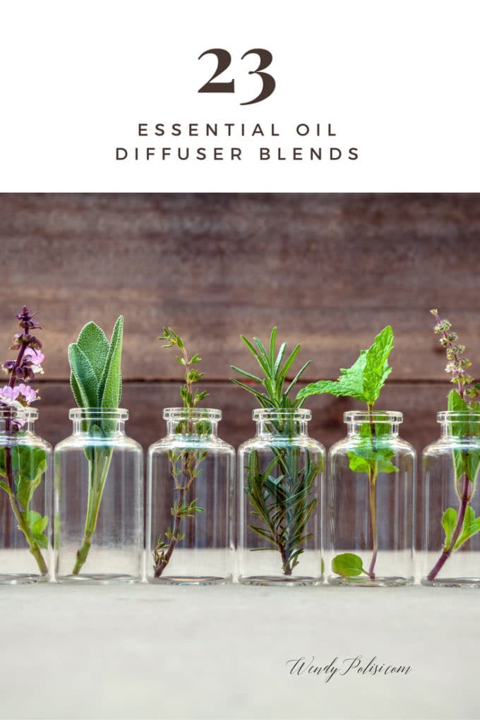 Photo of glass jars with plants in them and the copy Essential Oil Diffuser Blends - Essential Oil Diffuser Recipes