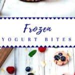 Log Pin for Frozen Yogurt Bites