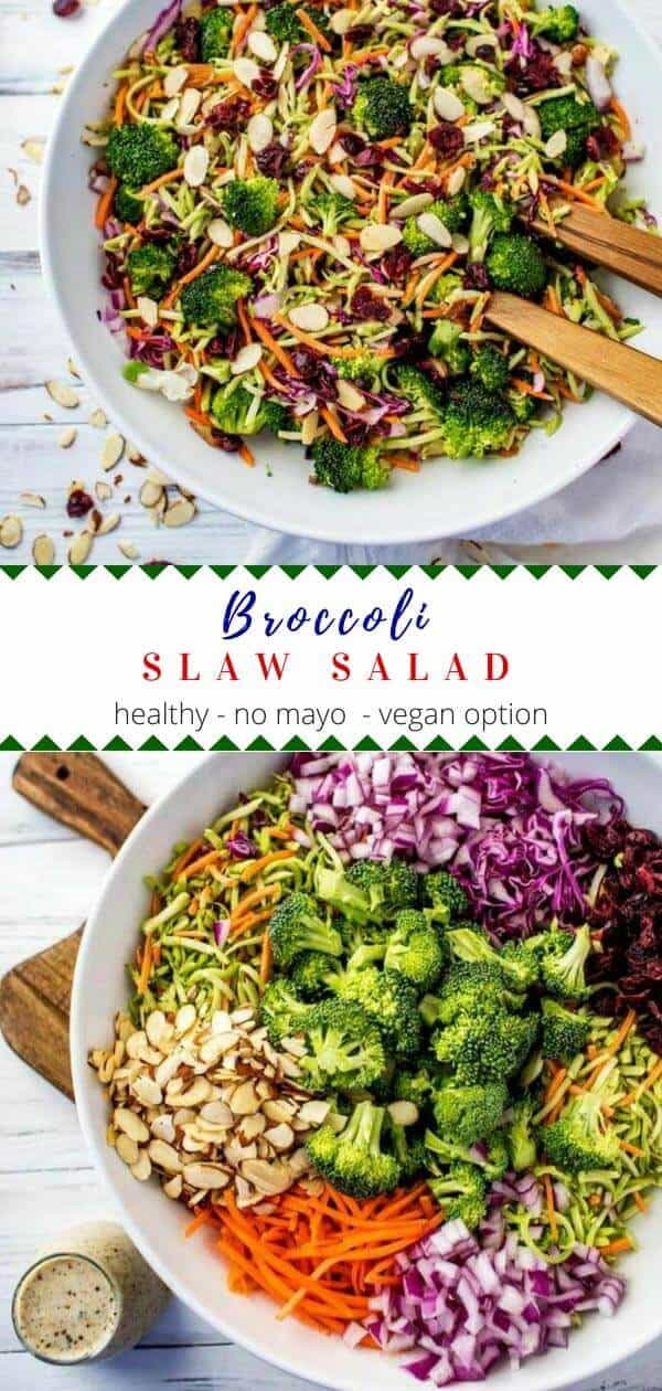 This healthy Broccoli Slaw Salad has a delicious no-mayo dressing that uses Greek Yogurt.  With almonds and dried cranberries, this crunchy salad is packed with flavor.  #glutenfree #vegan option #healthyrecipes #broccoli #broccolislaw #nomayo #Greekyogurt