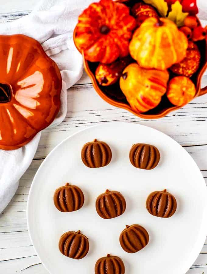 Photo of a plate of a prepared Chocolate Gummy Recipe with fall decor behind it.