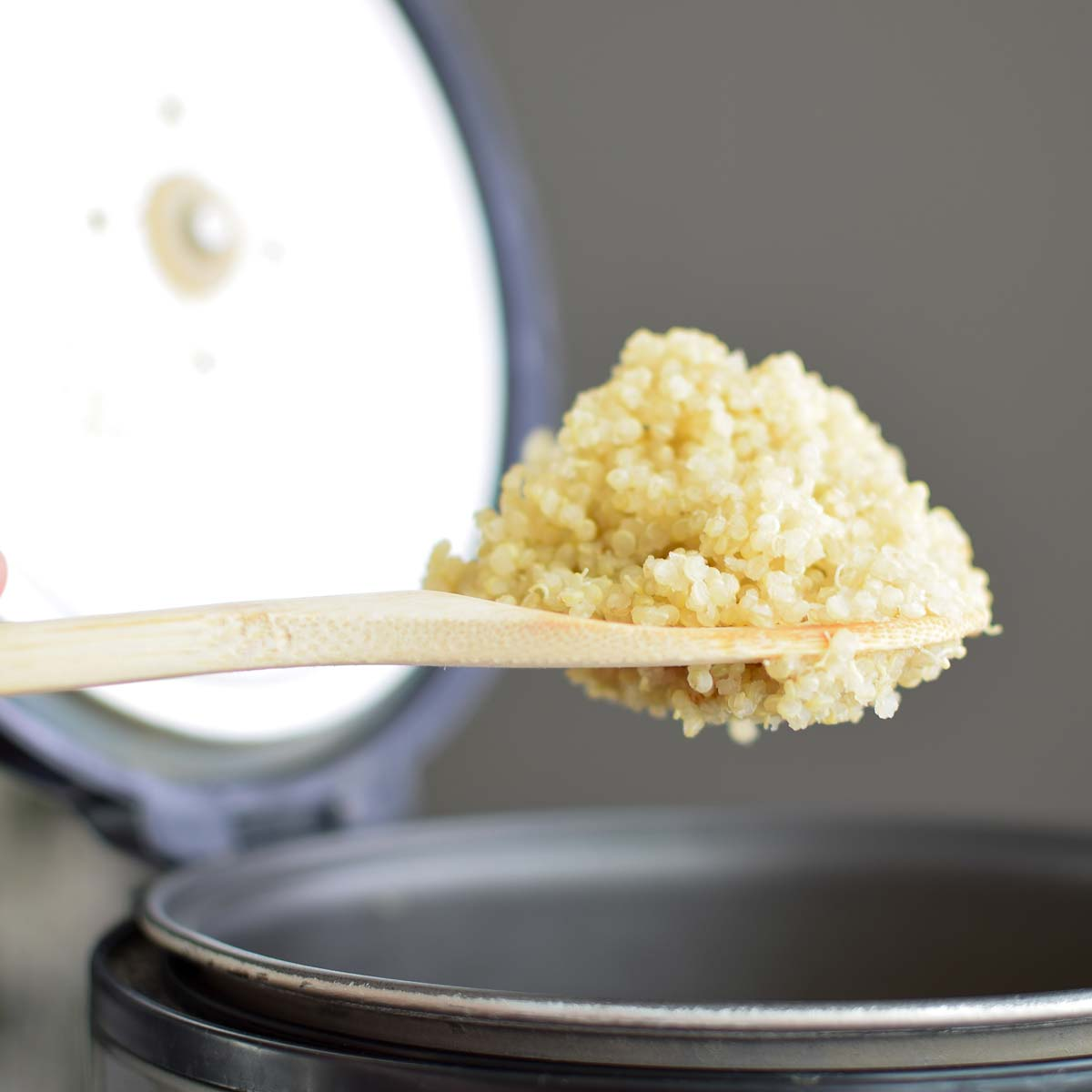 Square photo of a spoonful of quinoa being lifted from a rice cooker.